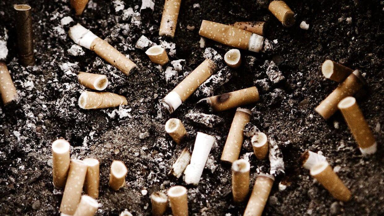Cigaretskodder er den mest forurenende type affald, viser nyt studie.