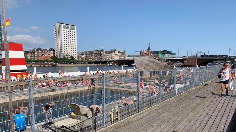 Også ved Islands Brygge i København har mange fundet badetøjet og solcremen frem. Foto: Amanda Mortensen.