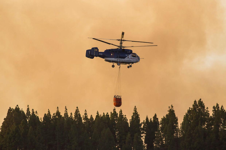 2.000 personer er evakueret på grund af skovbrandene. (Foto: Borja Suarez/Reuters)