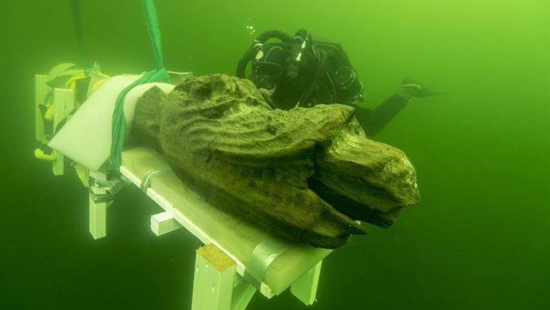 Den store frontfigur på Gribshunden, der hevet op fra havets dyb tilbage i 2015.