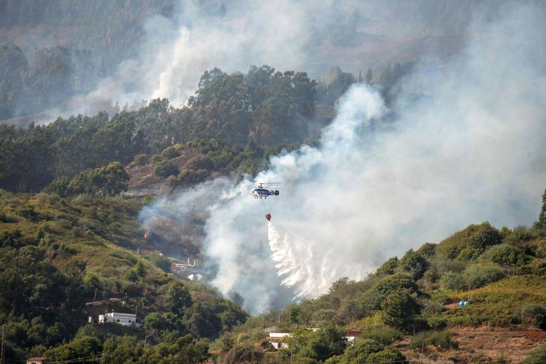 14 helikoptere er sat ind i kampen mod skovbranden. (Foto: Desiree Martin/AFP)
