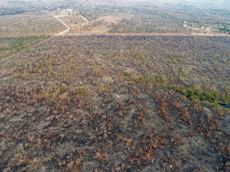 På dette billede taget torsdag den 22. august fremgår det med al tydelighed, at regnskoven lider enorm skade af brandene.