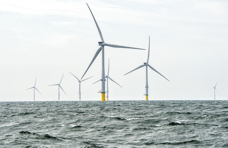 Horns Rev 3, Danmarks og Vattenfalls største havvindmøllepark, ses her i Nordsøen ca. 40 km fra Hvide Sande torsdag 22. august 2019.