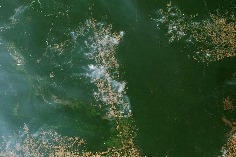 Frigiver Skraemmende Billeder Af Braendende Amazonas Bt Udland