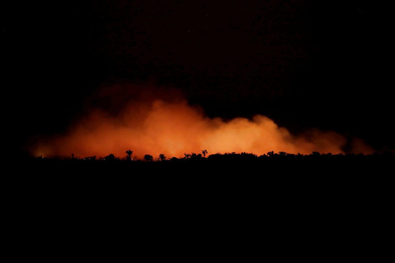 Rekordmange brande i Amazonas er en trussel mod klimaet og mod dyre- og plantelivet, men ikke verdens iltforsyning, udtaler eksperter.