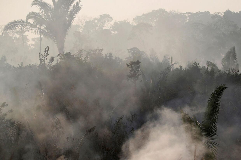 Brandene i Amazonas har nået et rekordhøjt antal melder NASA på baggrund af deres satellitovervågning.