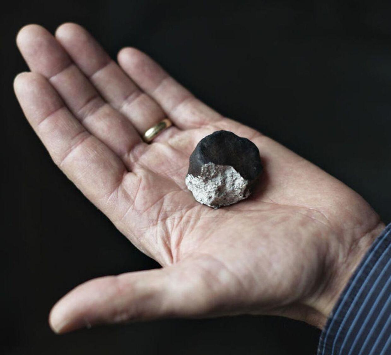 Henning Haack, lektor ved ved Statens Naturhistoriske Museum og ansvarlig for statens meteroitsamling, viser et stykke af meteoritten fra Ejby. (Foto: Emil Hougaard/Scanpix 2016)
