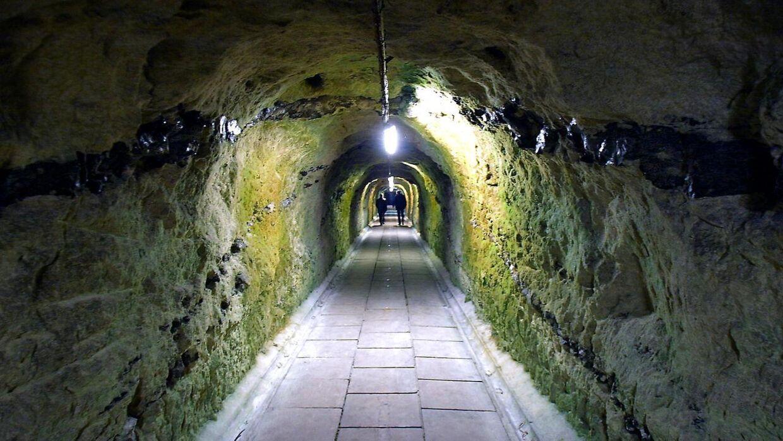 Stevnsfortet, der blandt andet er kendt for de lange gange, der løber under fortet, efterlyser nu gamle Anders And- og pornoblade fra årene 1972-2000.