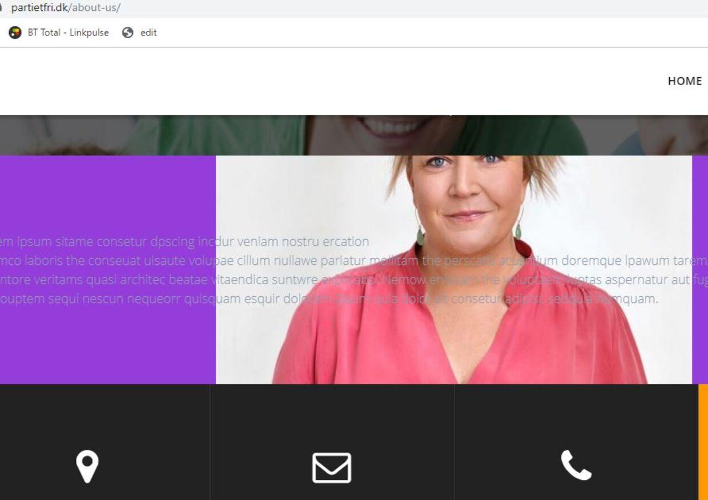 Dette screenshot er taget af B.T. lørdag aften. Nu er hjemmesiden Partietfri.dk lukket ned
