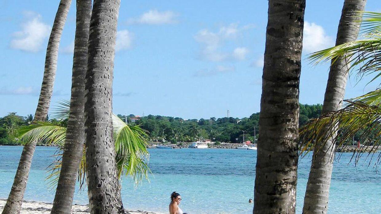 Tropestrand på Guadeloupe i Caribien...