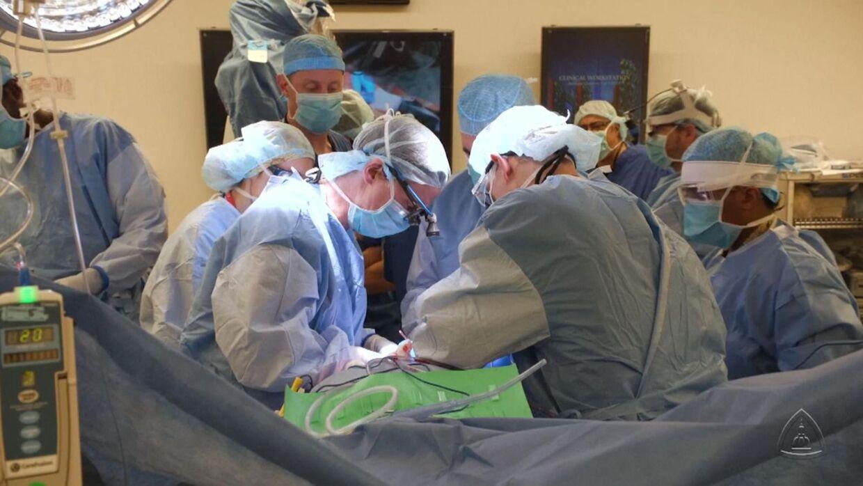Det tog kirurgerne 14 timer at udføre operationen.