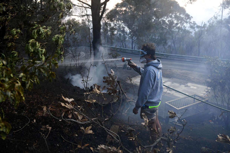 En beboer har bekæmpet branden i Woodford, NSW.