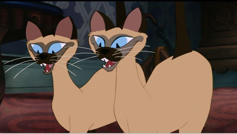 De siamesiske katte i 'Lady og Vagabonden'.