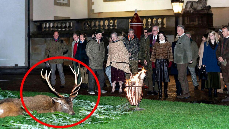 Det er billeder som dette fra onsdagens kongejagt i Gribskov, der har vakt opsigt i Tyskland.