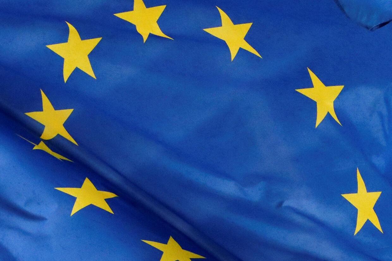 EU's officielle meningsmålinger tegner formentlig et for rosenrødt billede af opbakningen til unionen, vurderer eksperter. (arkivfoto). Yves Herman/Reuters