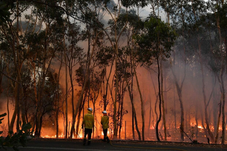 Omkring 100 kilometer nord for Sydney kæmper brandfolkene med at sikre beboelsesomårder fra brandene.