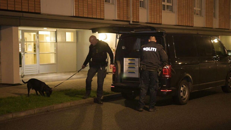 Politiaktion i Gersagerparken i Greve onsdag d. 11. december 2019. Politiet og PET har ifølge pressemeddelse foretaget en koordineret aktion flere steder i landet angående mistanke om forberedelse af et terrorangreb. Både i Aalborg og i Herlev ved København har politiet været i aktion, men det er uvist, om det har med terrorsagen at gøre. Scanpix 2019.
