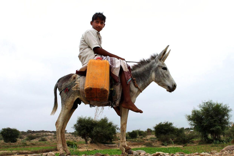 (Arkivfoto) En dreng rider på et æsel i det nordlige Yemen i 2019. ESSA AHMED / AFP.