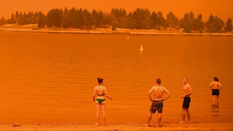 Borgere i den australske delstat New South Wales tager en dukkert i den ekstreme hede, som gør situationen med de omfattende brande endnu værre.
