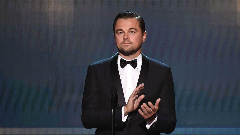 Leonardo DiCaprio kalder Brad Pitt for 'lover'.