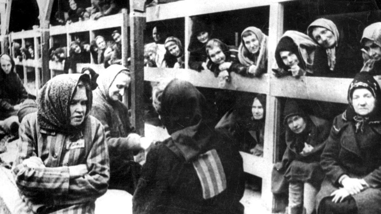 Auschwitz-fangerne sov side og side i proppede barakker. Der var koldt, og der blev kæmpet om tæpperne, fortæller Arlette Andersen. Her et billede taget i forbindelse med befrielsen i januar 1945.