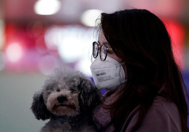 En kvinde med ansigtsmaske holder på sin hund i Pudong International Airport i Shanghai, Kina.