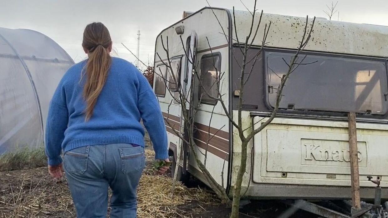 Hønsehuset er en gammel campingvogn, så hønsene kan flyttes rundt på gården afhængig af, hvor der er brug for at blive fjernet ukrudt.