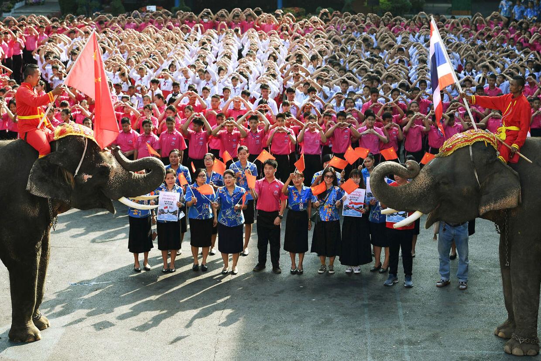 Elefanter og thailandske elever i en hjerteform ønsker god Valentines Dag-bedring til kineserne.