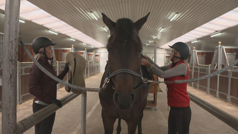 Her ses Amalie Szigethy og Janni Ree i færd med at sadle en af hestene op.