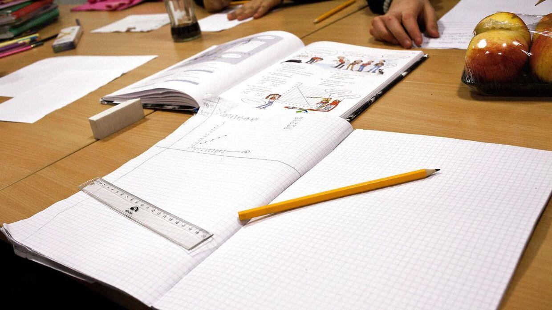 Det bliver nu op til de enkelte skoler, om de vil gennemføre de omstridte nationale test i dette skoleår. (Arkivfoto)