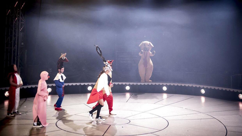 Cirkus Summarum havde i 2018 Bamse med i manegen.