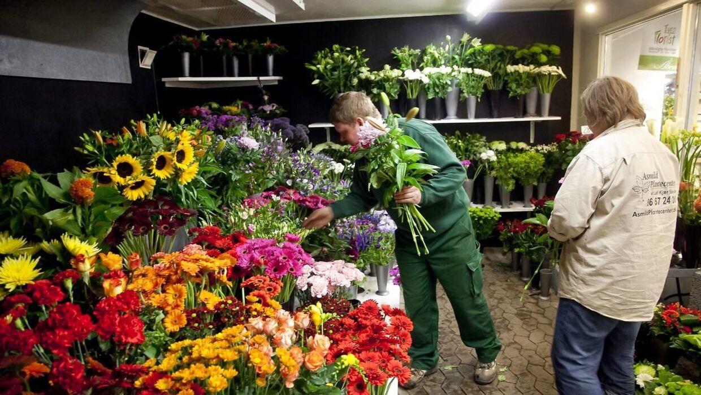 Mange blomsterbutikker oplever et boom under coronakrisen. Billedet er hentet i arkivet og viser altså ikke den i artiklen omtalte blomsterhandler. (Arkivfoto)