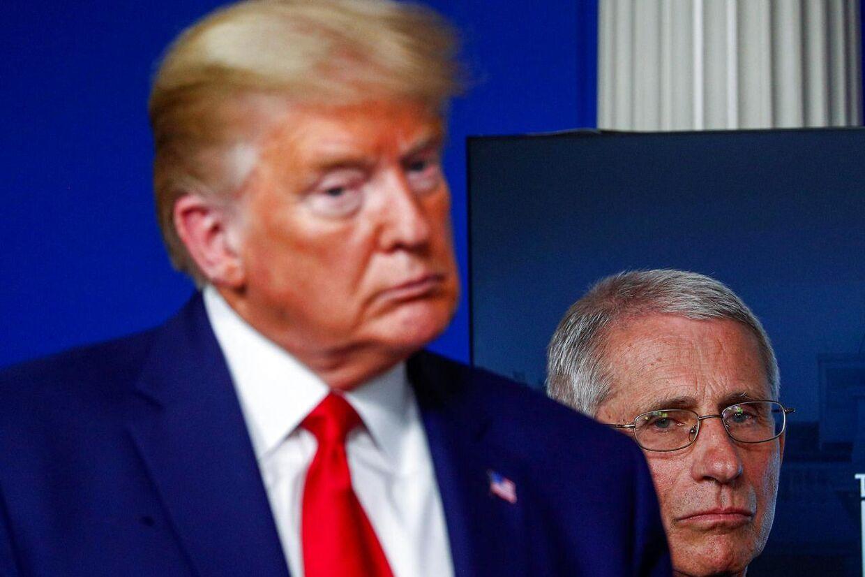 Dr. Anthony Fauci står altid ved præsidentens side. Men den 79-årige læge er ikke populær blandt mange af Trumps mest entusiastiske vælgere.