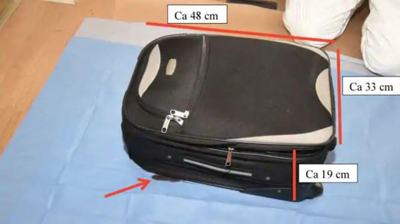 Det var i denne kuffert, at politiet fandt Wilmas afskårne hoved. Foto: Svensk politi