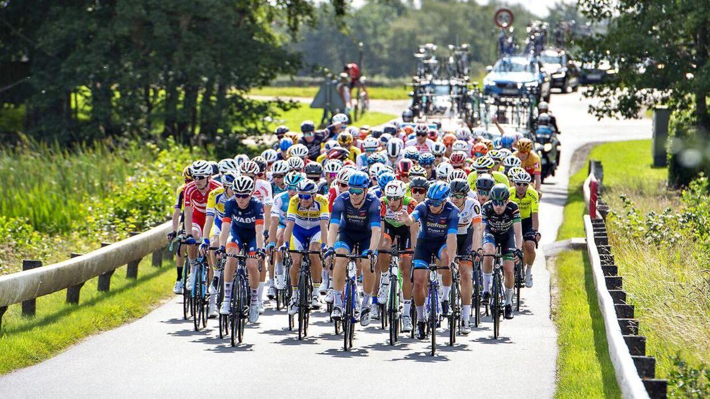 Feltet i cykelløbet PostNord Danmark Rundt ses her ved Tange Sø , onsdag 21. august 2019.. (Foto: Henning Bagger/Ritzau Scanpix)