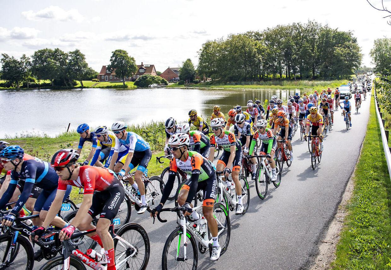 (ARKIV) Feltet i cykelløbet PostNord Danmark Rundt ses her ved Tange Sø, onsdag 21. august 2019. Usikkerhed om sundhedssituationen og myndighedernes krav har fået cykelunionen til at aflyse Danmark Rundt. Det skriver Ritzau, onsdag den 20. maj 2020. (Foto: Henning Bagger/Ritzau Scanpix)