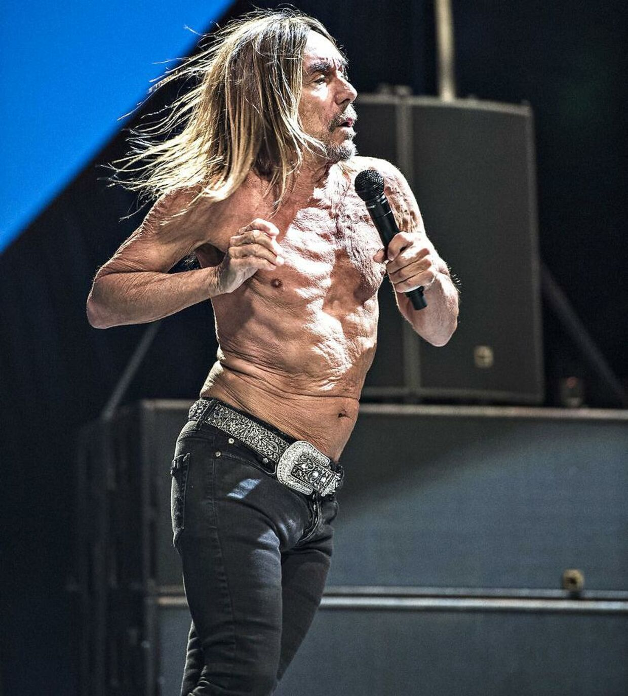 Iggy Pop på Northside i 2016.