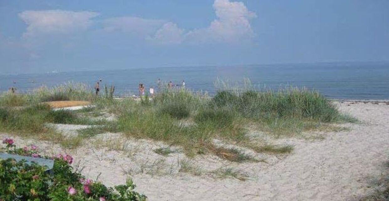 Stranden ved Ellinge Lyng i Odsherred et kvarters gang fra Ole Irgens sommerhus.