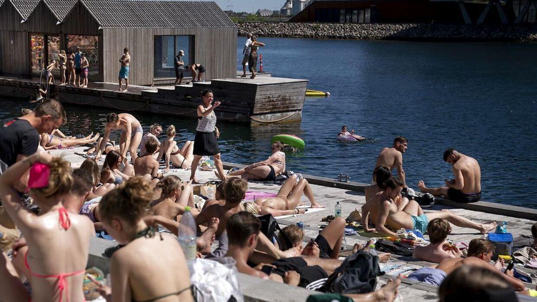 (ARKIV) Bade og solgæster nyder sommervejret ved Nordhavn mandag den 1. juni 2020. Kan du også blive stresset af for meget sol? (Foto: Liselotte Sabroe/Ritzau Scanpix)