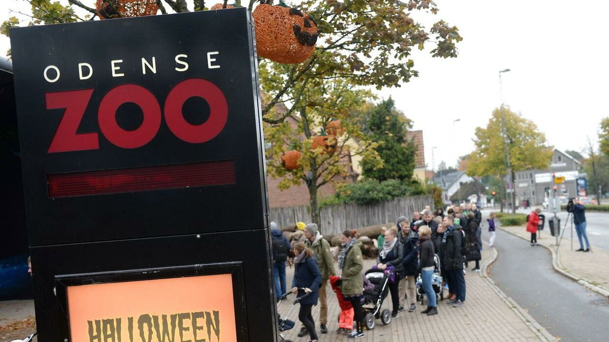 Odense Zoo.