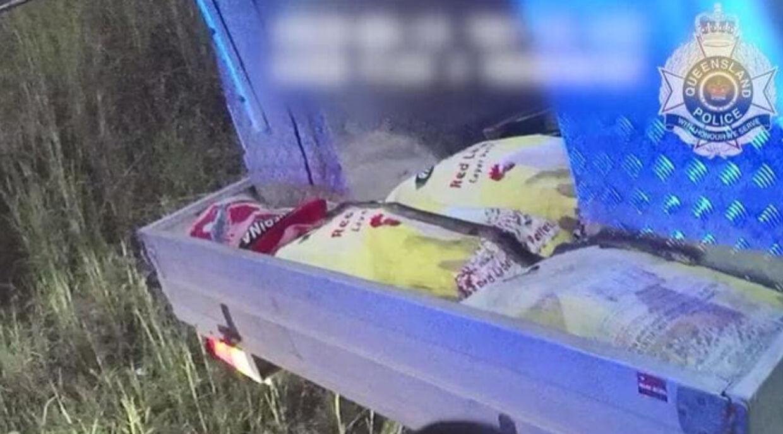 Slangen lå blodigt såret hen over nogle vareprøver bag i bilen.