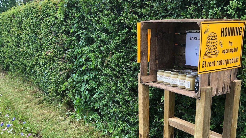 En debut inde i sin debut som vejbods-sælger fik Michael Kokborg Kni stjålet sit sidste honning. Foto: Privat