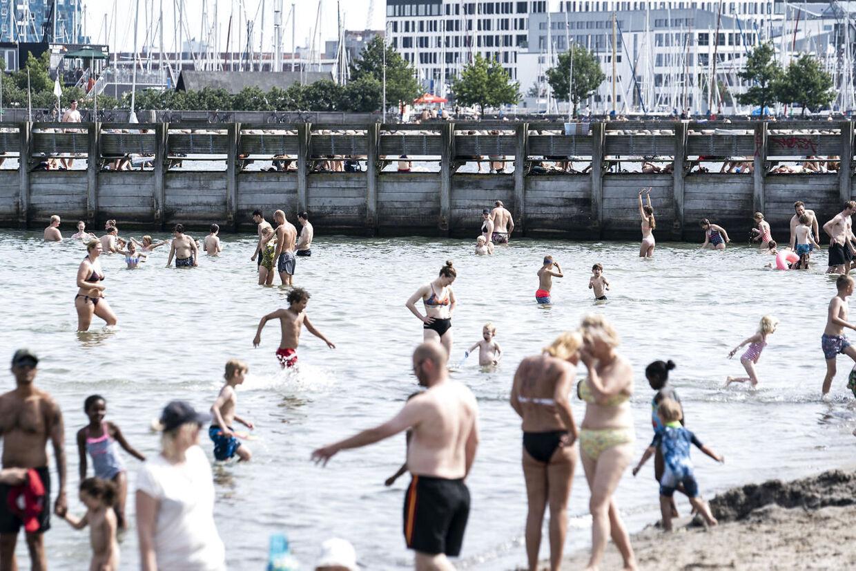 Badegæster nyder sommeren i Svanemøllen Strandpark i København, søndag den 19. juli 2020. Torsdag vælter en hedebølge ind over landet.