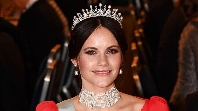 Prinsesse Sofia, hvis borgerlige navn er Sofia Kristina Hellqvist, beskæftiger sig især med velgørende formål.