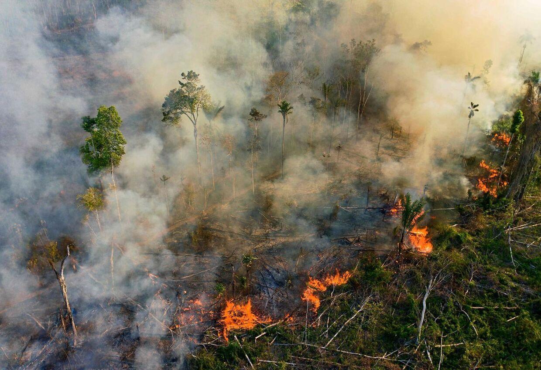 Også denne skovbrand er sat igang illegalt.