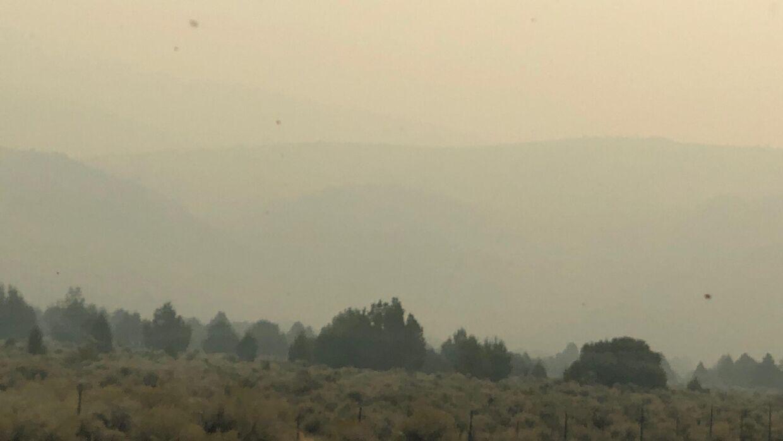 Charlotte Jorst kan ikke træne sine heste i Reno længere på grund af den tykke røg og aske, som har indhyldet området.