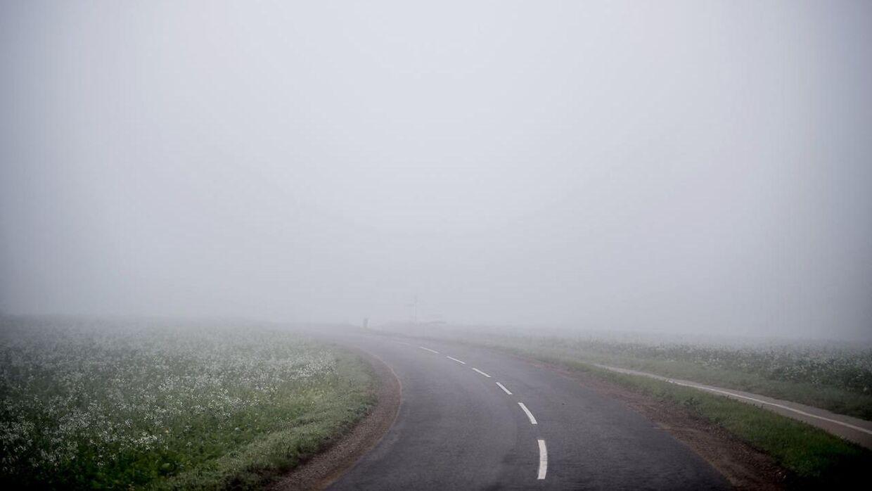 Arkivfoto af tæt tåge