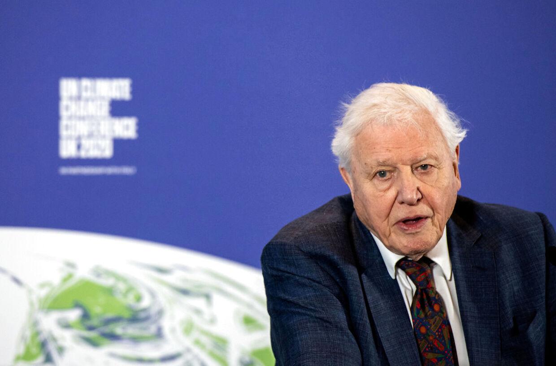 David Attenborough, 94 år.