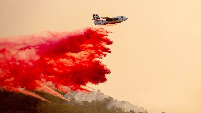 Et fly forsøger at standse de voldsomme brande, som hærger Napa Valley.