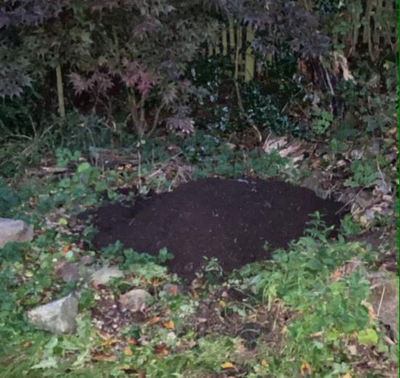 Tirsdag blev der afholdt en lille begravelse for Ollie, og her ses hans gravsted.